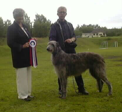 Ch Baylind Enigma winning Best in Show under Nenne Runsten